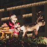 dresden_christmas_market_05